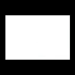 Logo-BR-250